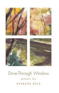 drive-through-window-cover.jpg